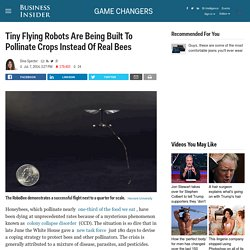 Harvard RoboBees Closer to Pollinating Crops
