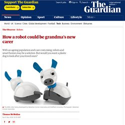 How a robot could be grandma's new carer