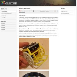 Robot Microbit