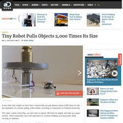 Tiny Robot Pulls Objects 2,000 Times Its Size