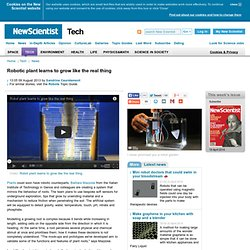 Robotic plant learns to grow like the real thing - tech - 09 August 2013