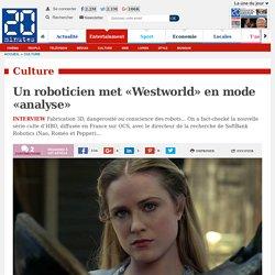 Un roboticien met «Westworld» en mode «analyse»