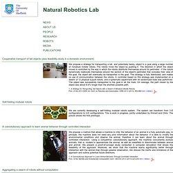 Natural Robotics Lab, The University of Sheffield