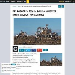 Des robots en essaim pour augmenter notre agriculture