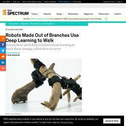 Robots Made Out of Branches Use Deep Learning to Walk