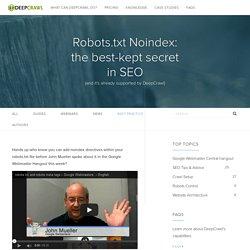 Robots.txt Noindex: the best-kept secret in SEO - DeepCrawl