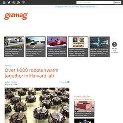Over 1,000 robots swarm together in Harvard lab