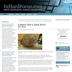 A Rodent With a Robot Brain? It's True