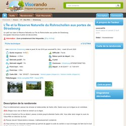 L'Île et la Réserve Naturelle du Rohrschollen aux portes de Strasbourg