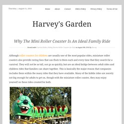 Why The Mini Roller Coaster Is An Ideal Family Ride – Harvey's Garden