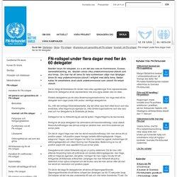 FN-rollspel under flera dagar med fler än 60 delegater