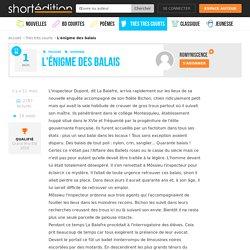 L'œuvre L'énigme des balais par l'auteur Romyniscence, micro nouvelle disponible en ligne