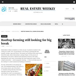 Rooftop farming still looking for big break