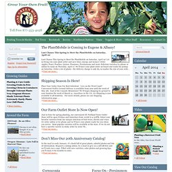One Green World Online Catalog