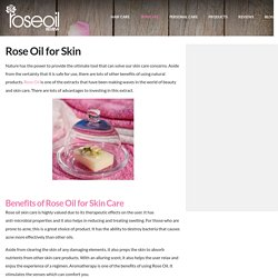 Rose Oil for Skin Health and Protection - Rose Oil Review