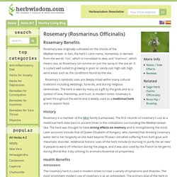 Rosemary Benefits & Information