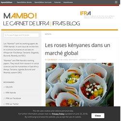 Les roses kényanes dans un marché global – Mambo !