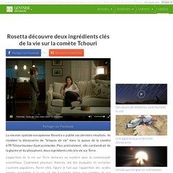 Rosetta découvre deux ingrédients clés de la vie sur la comète Tchouri