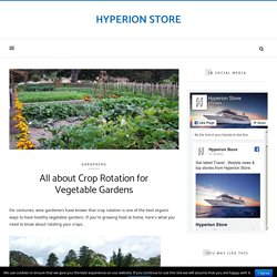 All about Crop Rotation for Vegetable Gardens – Hyperion Store