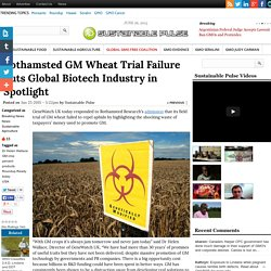 Rothamsted GM Wheat Trial Failure Puts Global Biotech Industry in Spotlight
