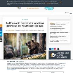 La Roumanie prévoit des sanctions pour ceux qui nourrissent les ours
