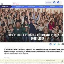 Les roux et rousses de France peinent à se mobiliser - LCI