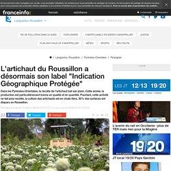 """FRANCE LANGUEDOC ROUSSILLON 06/05/16 L'artichaut du Roussillon a désormais son label """"Indication Géographique Protégée"""""""