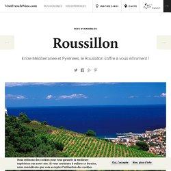 Visiter le vignoble du Roussillon - oenotourisme