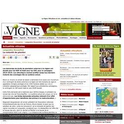 Languedoc-Roussillon : La volonté deplanter