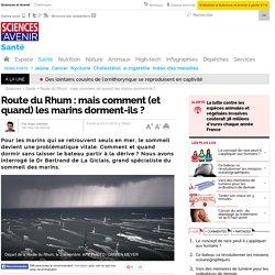 Route du Rhum : mais comment (et quand) les marins dorment-ils