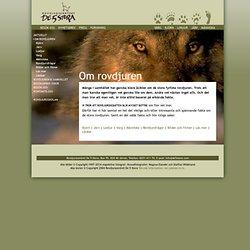 Rovdjurscentret De 5 Stora - Om rovdjuren