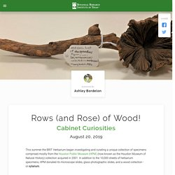 Rows (and Rose) of Wood!