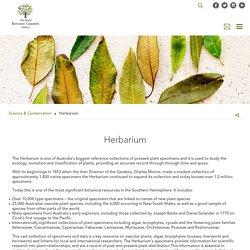 Royal Botanic Garden - Herbarium