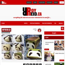 Roy Reid Comedy – Canada's #1 Source For All Things Comedy