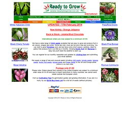 Ready to Grow, Chilli Seeds, Tomato Seeds, Capsicum Seeds, Banana Seeds, Exotic Fruit Seeds