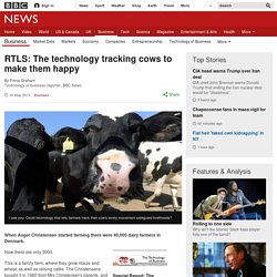 RTLS: The technology tracking cows to make them happy