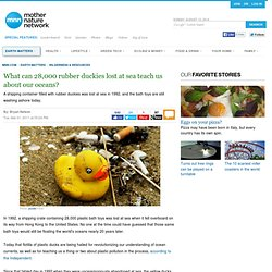 What can 28,000 rubber duckies lost at sea teach us about our oceans?