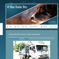 Blue Heeler Bins for timely Waste Removal & Skip Bin Hire