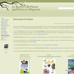 Docs pour la classe - les Ruchers du Plessis Apiculture en Mayenne