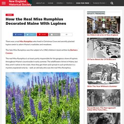 How the Real Miss Rumphius Decorated Maine With Lupines