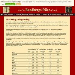 Runåbergs fröer - Groningstabell