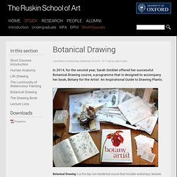 The Ruskin School of Art - Botanical Drawing