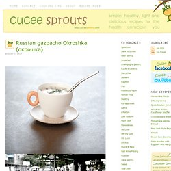 Russian gazpacho Okroshka (окрошка)