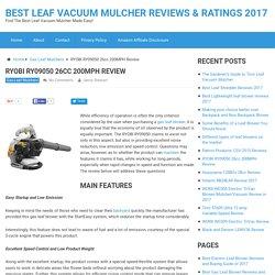 RYOBI RY09050 26cc 200MPH Review of 2017