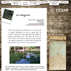 """Escape Game """"La Mangrove""""_BTS MUC (Kourou)"""
