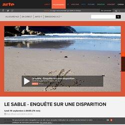 Le sable : enquête sur une disparition