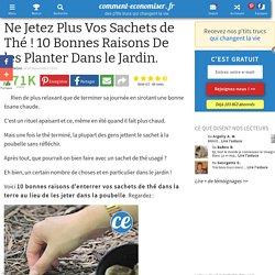 Ne Jetez Plus Vos Sachets de Thé ! 10 Bonnes Raisons De les Planter Dans le Jardin.