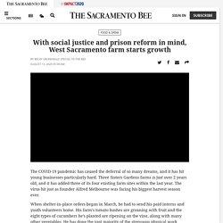 West Sacramento farm grows with eye on social justice