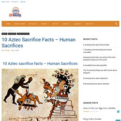 10 Aztec Sacrifice Facts – Human Sacrifices