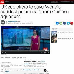 UK zoo offers to save 'world's saddest polar bear' from Chinese aquarium